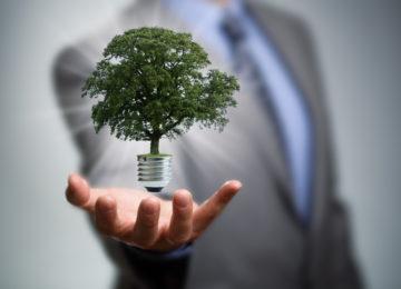 Sobre remuneração dos gestores, gestão de riscos e destruição de valor