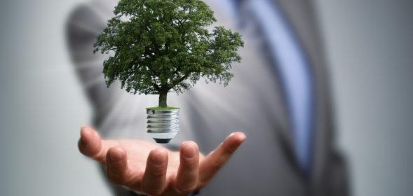 Falando de negócio sustentável