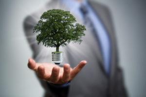 Prestação de contas: o que importa na boa governança